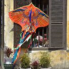 Go fly a Kite by Susan Moss