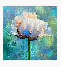 Plein Air Au Printemps poppy flower floral art Photographic Print