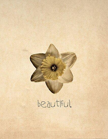 Beautiful. by Kerri Swayze