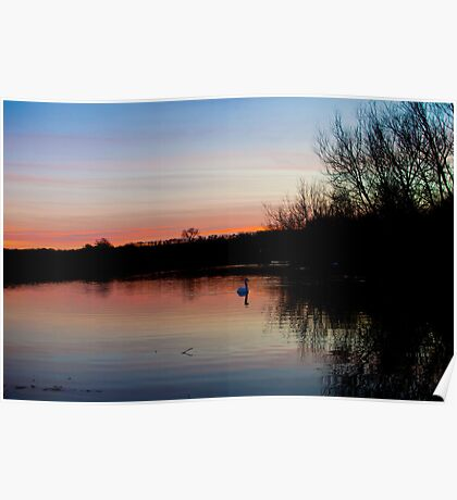 Port Meadow Sunset Poster