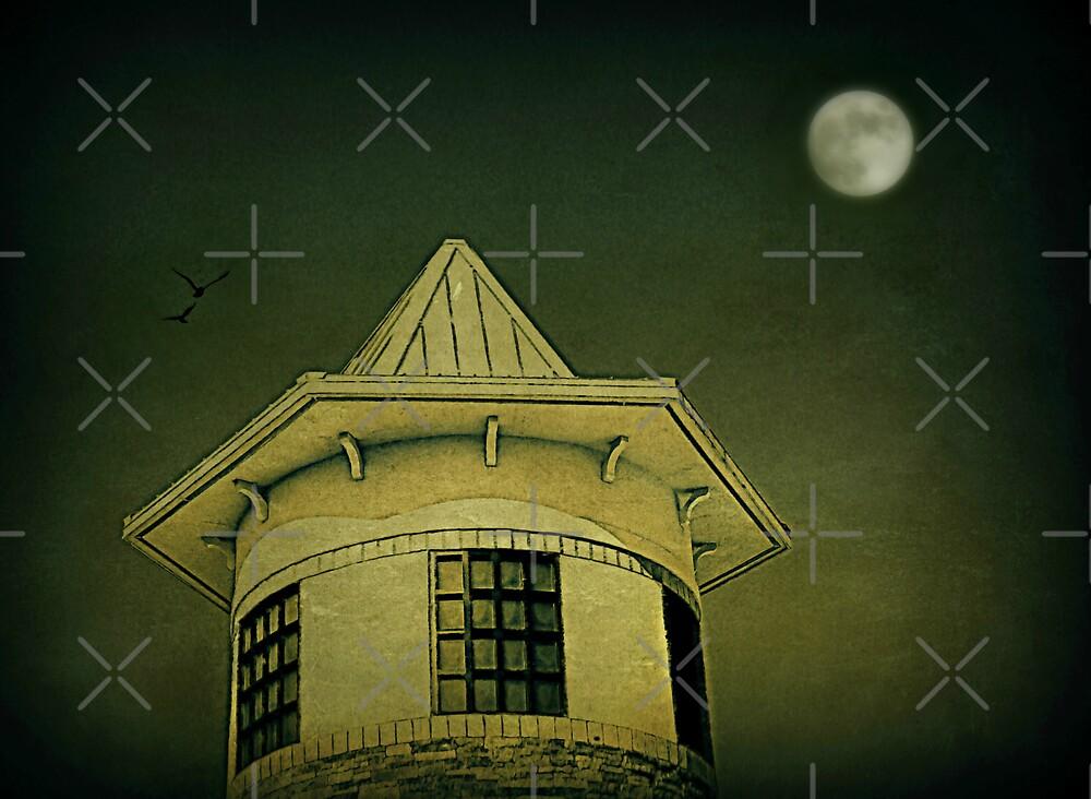 Watchtower by Scott Mitchell