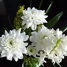 Purity - White Hyacinth and Dahlias by BlueMoonRose