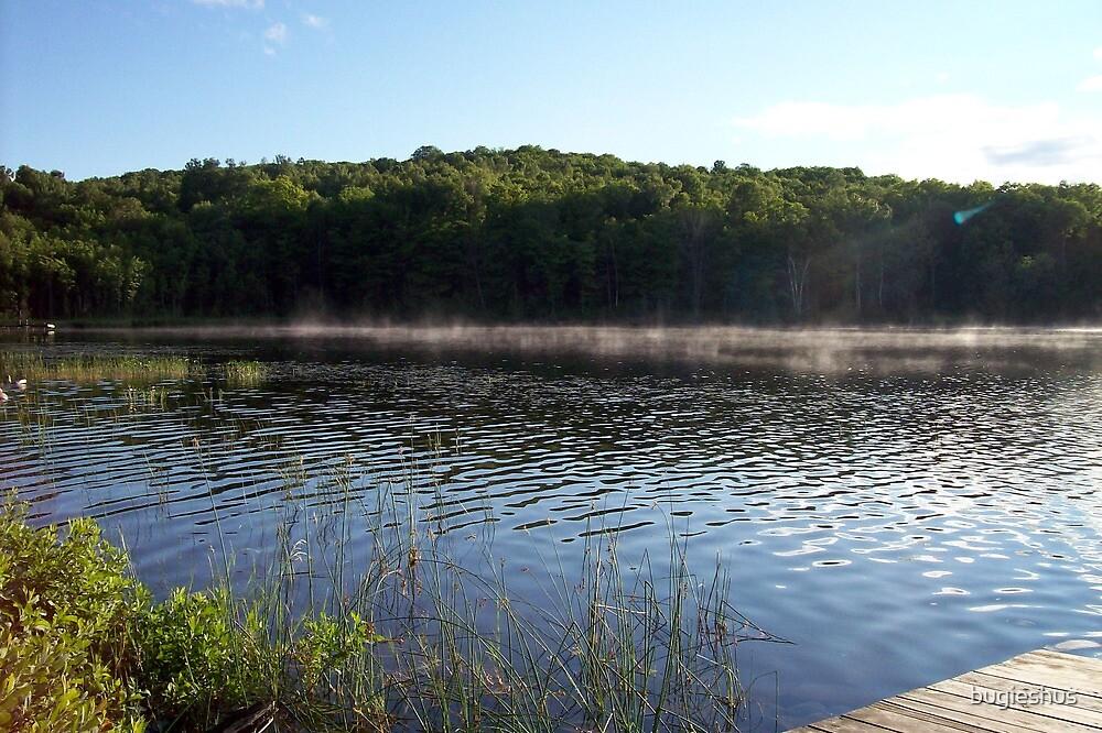 misty waters by bugieshus