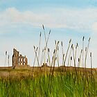 Tynemouth Priory by Gillian Cross
