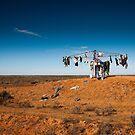 Outback clothesline by Des Berwick