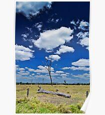 Lockyer Valley Paddock Poster