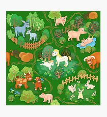 Farmyard with domestic animals, trees and footpaths Photographic Print