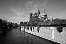 Notre Dame de Paris by Nicholas Coates
