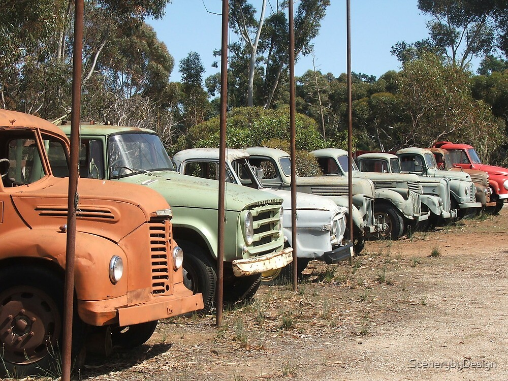 Vintage Trucks (7328) by ScenerybyDesign