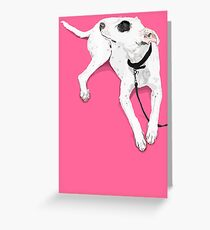 Hot Spotty Lottie  Greeting Card