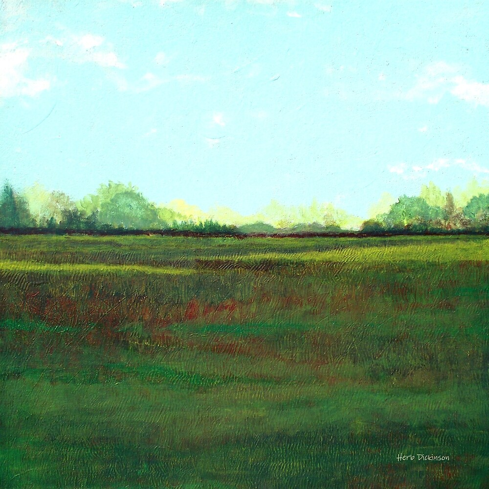 Sunny Field by Herb Dickinson