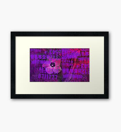 Magenta Flower Framed Print