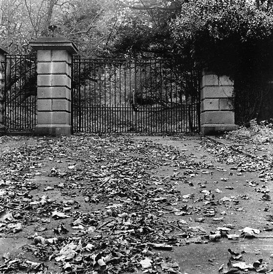 Derelict Gates, Phoenix Park by Dave  Kennedy