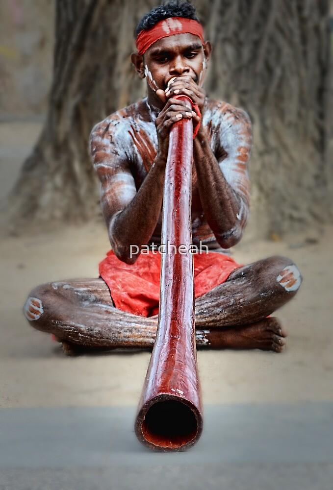 Didgeridoo by patcheah