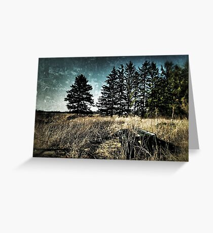Off the Path Greeting Card