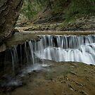 Cascade Splendor by Jeff Palm Photography