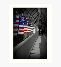 American Flags Over the Highway Art Print