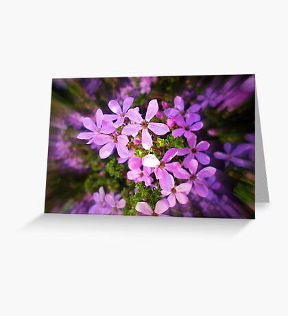 Dainty little Flower - Spring 2010 Greeting Card