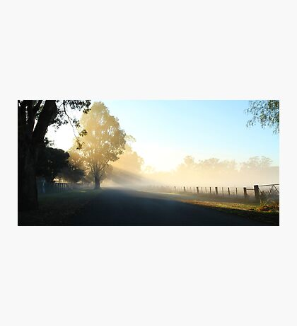 """Misty Morning"" Photographic Print"