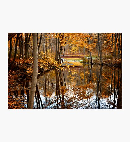 Beautiful Reflections Photographic Print