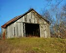 Shed on a Hill by Sheryl Gerhard