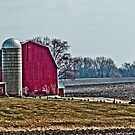 Red Barn with Silo by Marcia Rubin