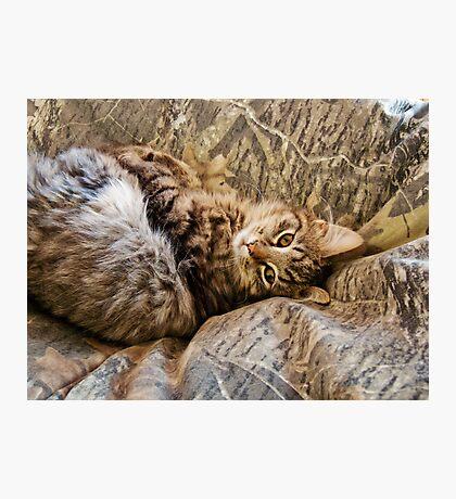 Camo Kitty Photographic Print