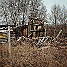 Real Estate Bargain!  by Marcia Rubin