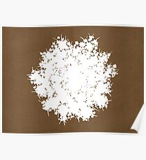 Queen Anne's Lace in Brown & White Poster
