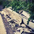 Broken Pipeline by AndrewBerry