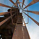 Cockatoo Dock Crane Ladder by Richard  Windeyer