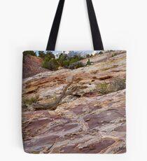 Sandstone Patterns at Split Mountain 2 Tote Bag
