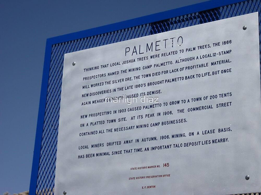 Palmetto Nevada by marilyn diaz