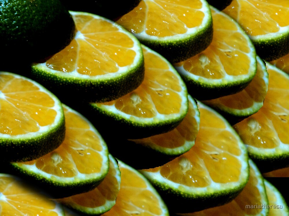 Citrus, citric, citrical... by mariatheresa