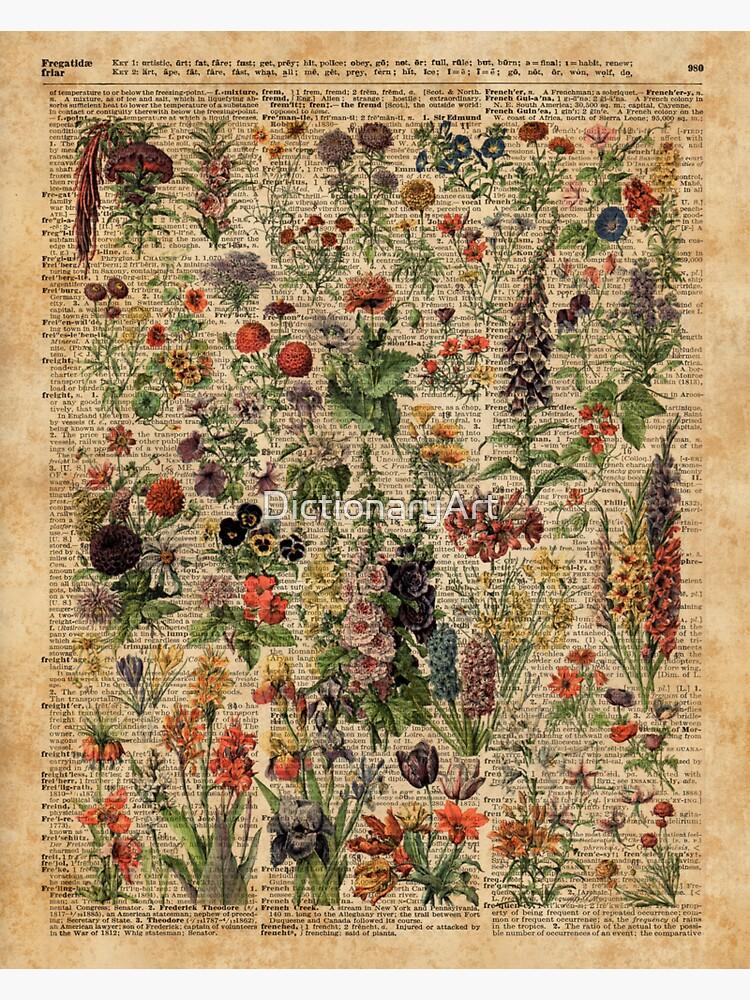 Bunte wilde Wiesenblumen über Weinlese-Wörterbuch-Buch-Seite von DictionaryArt