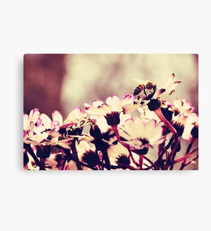 Drinking From Nature Canvas Print