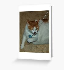 Science Experiment Greeting Card