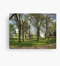 Spring Is So Beautiful Canvas Print
