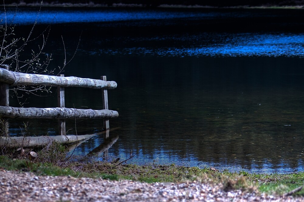 Submerged Fence. by cavan michaelides