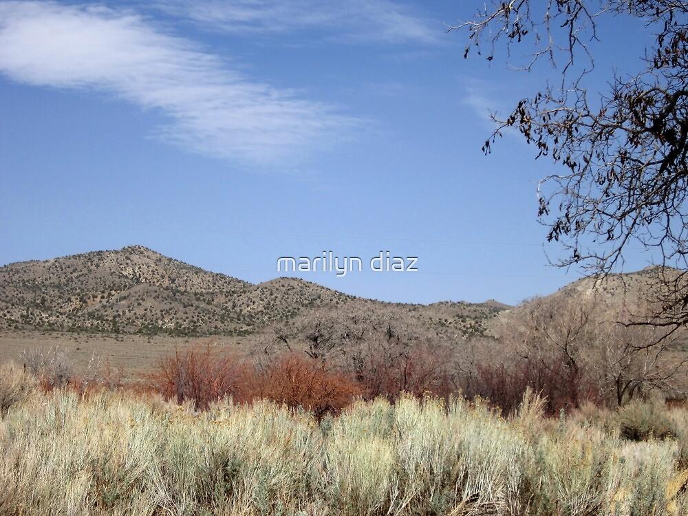 Just Nevada by marilyn diaz
