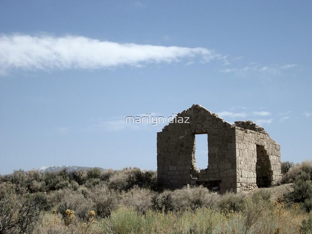 Palmetto, Nevada by marilyn diaz