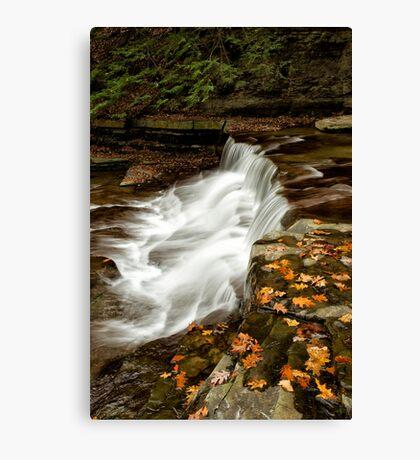 Autumn Cascade Canvas Print