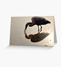 Great Blue Heron at Grover Cleveland Park, Essex Fells NJ - reflections1 Greeting Card