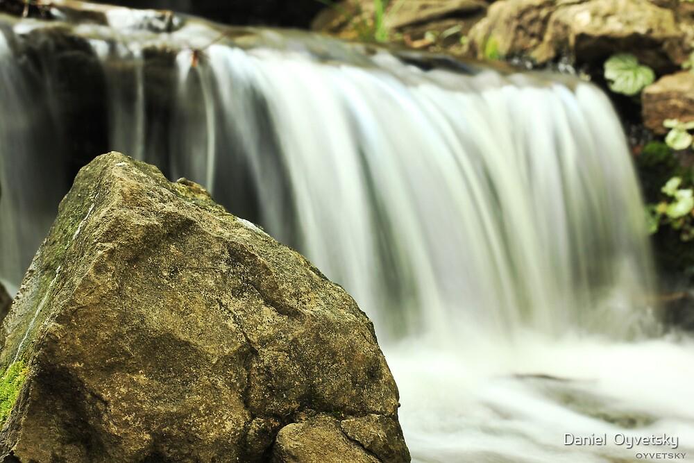 Cheekwood - Waterfall 2 by Daniel  Oyvetsky