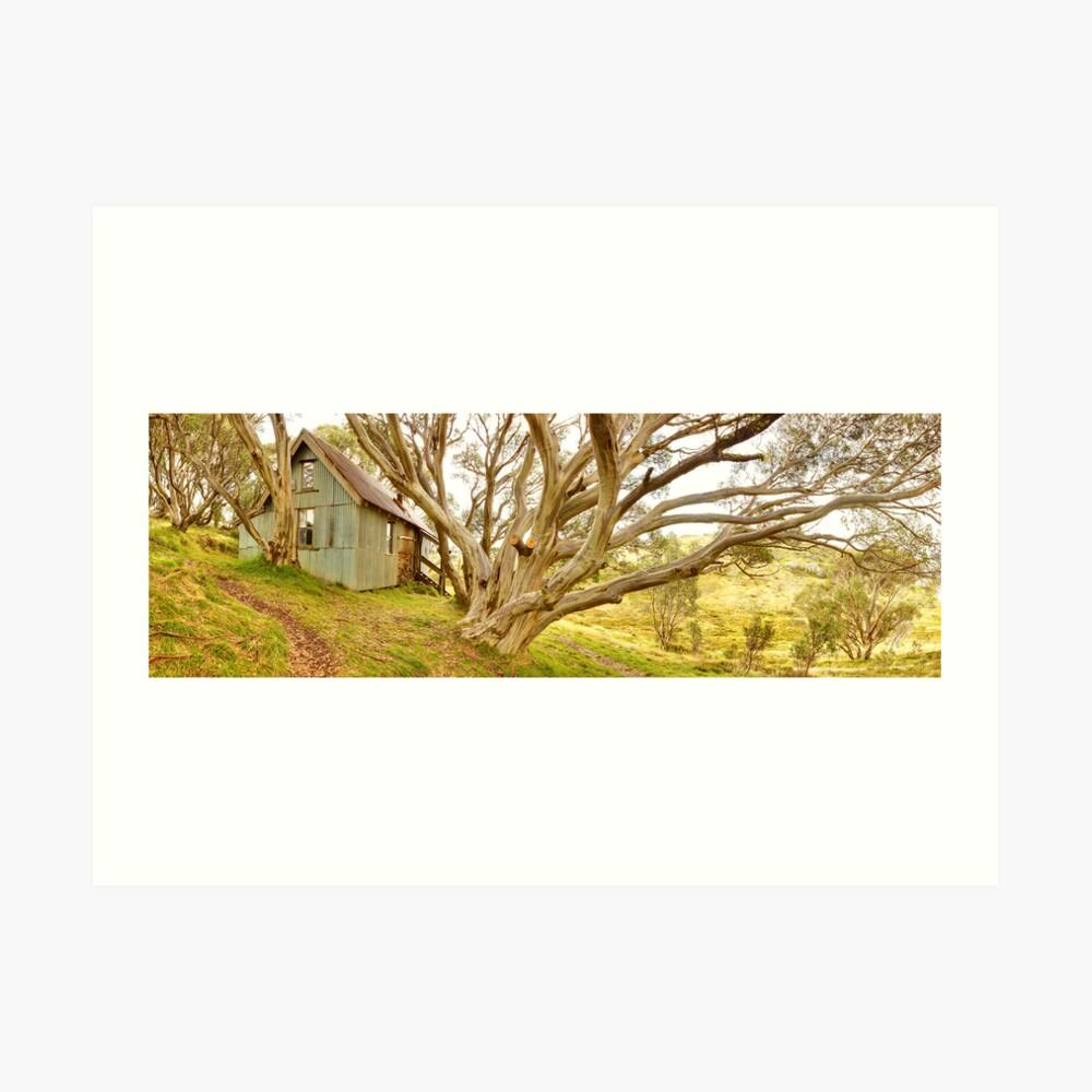 Cope Hut, Falls Creek, Victoria, Australia Art Print