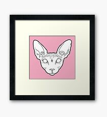 Sphynx Cat Framed Print