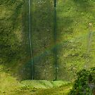Napali Valley Rainbow by Stephen Vecchiotti