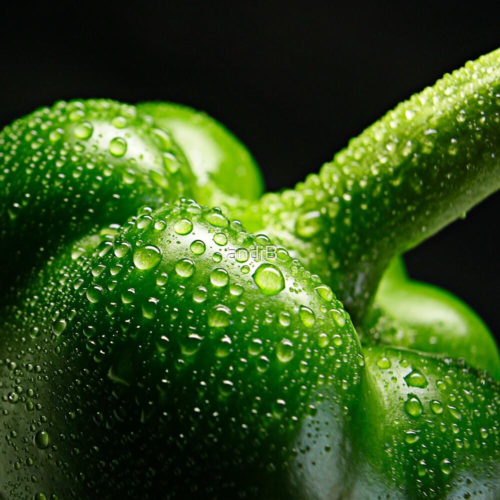 Fresh and green by Andreas  Berheide
