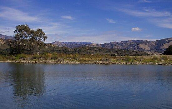 Cachuma Lake California #2 by Renee D. Miranda