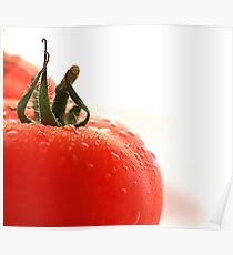 Watered Tomato Poster